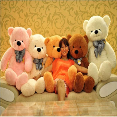 宏方宏方原创泰迪熊公仔大熊玩偶毛绒玩具布娃娃大号可爱抱抱熊超大