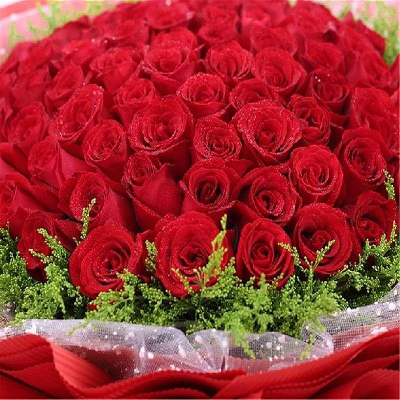 爱的印记 66朵红玫瑰鲜花花束