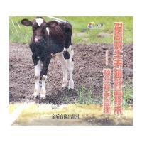 提高奶牛养殖犊牛效益技术饲养管理【v犊牛大李珍妮视频图片