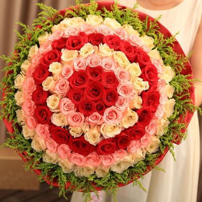 五二零 鲜花速递 99朵红粉香槟混搭玫瑰鲜花 棒棒糖花束 生日鲜花全国