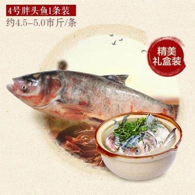 查干湖 胖头鱼 4.5-5.5斤 158元(券后93元包邮)