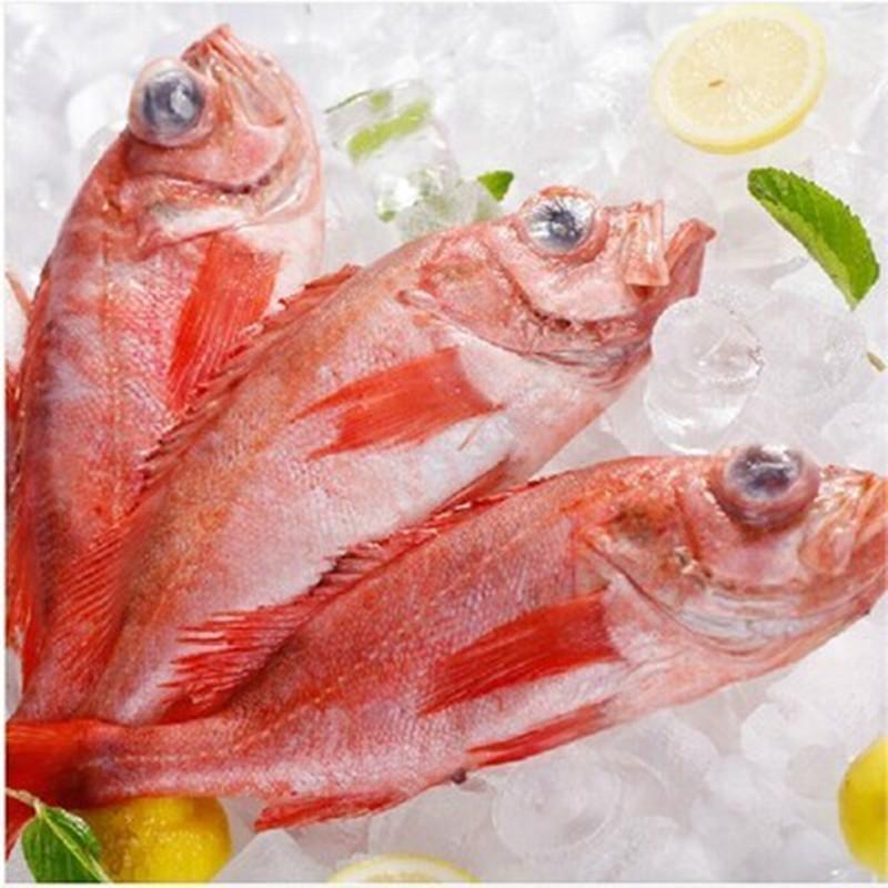 【嘉特博】冰岛进口顶级野生红石斑鱼
