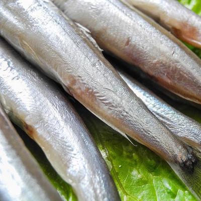 冷冻鱼保质期