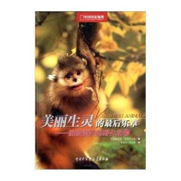 濒临灭绝的野生动物:美丽生命的最后乐章