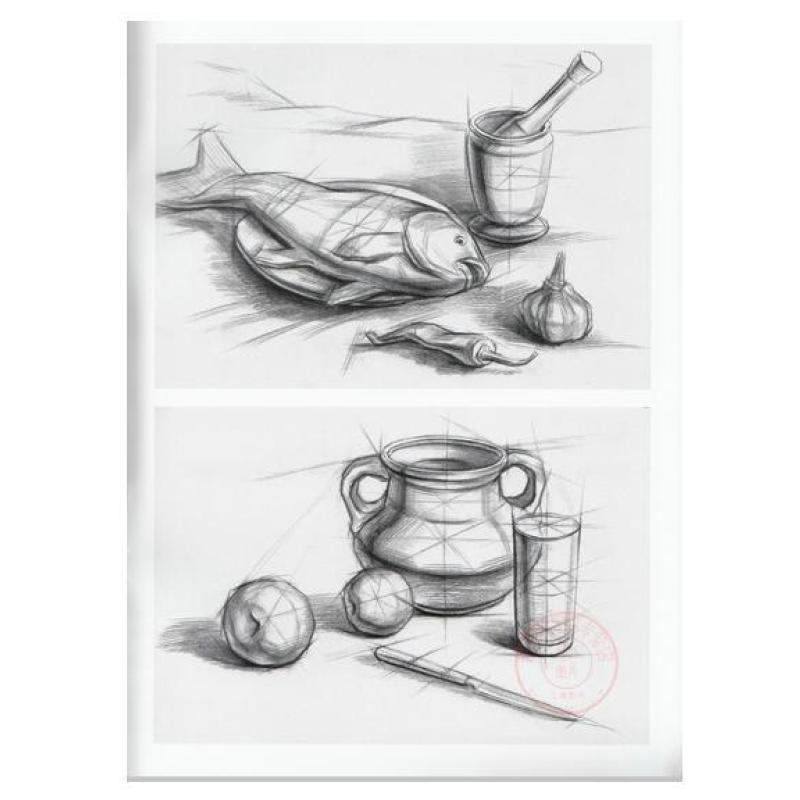 *新概念美术技法权威教学 基础版 结构静物3