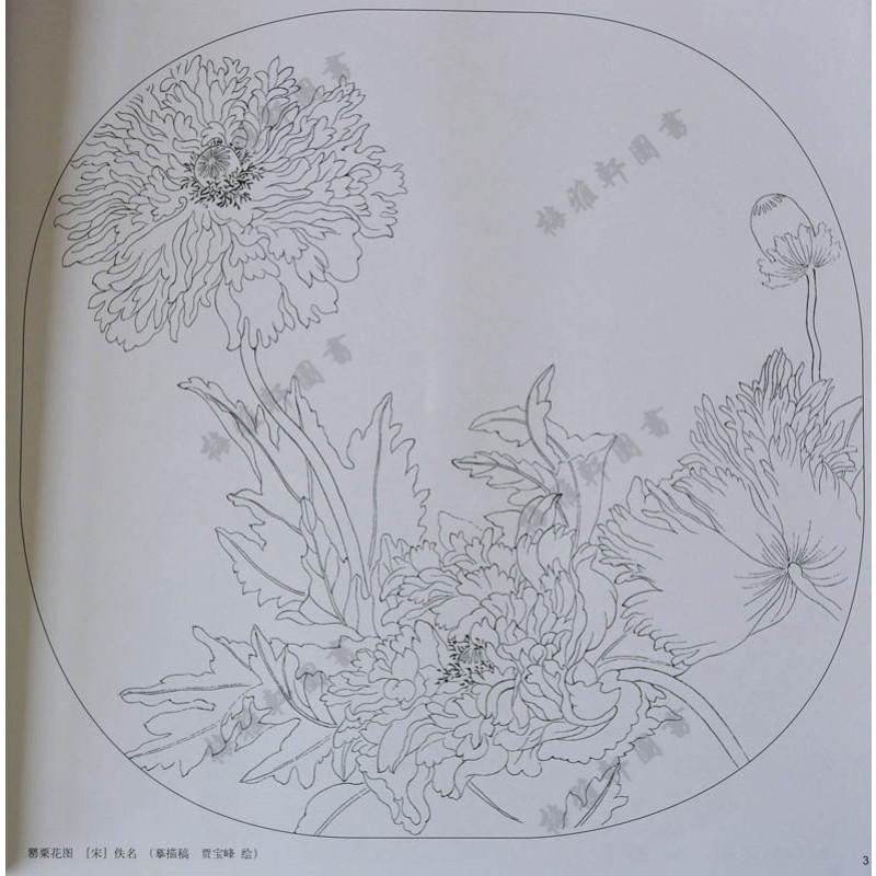 国画工笔白描线描底稿 入门教程 荷花牡丹菊花兰花梅花玉兰技法步骤