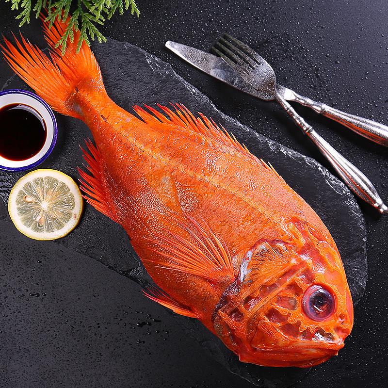 新西兰长寿鱼价格报价行情   京东   JD.com