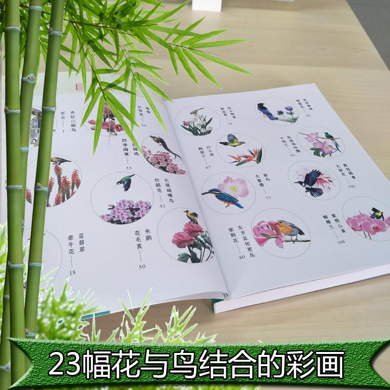 书铅笔画素描花鸟-彩铅画 书