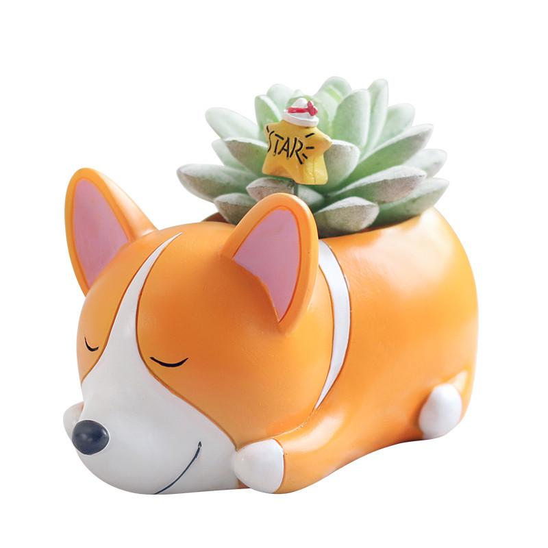 创意多肉花盆小动物花盆萌宠小狗可爱卡通花器微景观摆件-睡宠花盆图片