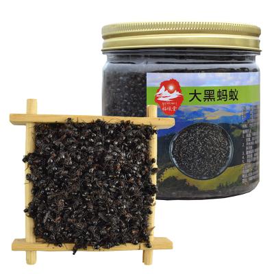 福曦堂 甘孜州藏族自治州 野生大黑蚂蚁 50克*1罐 泡酒料 黑蚂蚁 野生黑蚂蚁