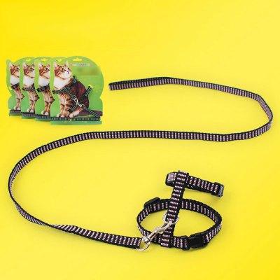 【可調節貓咪牽引繩子】拴貓繩溜貓繩子 寵物胸背帶成貓 貓鏈子牽引帶純色毛用工字胸背牽引帶子寵物貓咪日常出行用品
