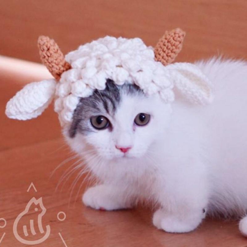 宠物变装帽子手工编织猫猫狗狗可爱帽子羊咩咩宠物帽头饰配饰